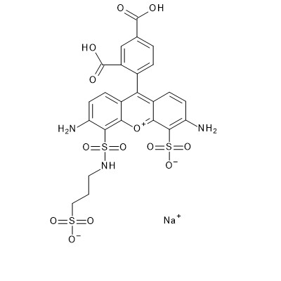 DY-490 Structure